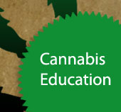 Cannabis Education