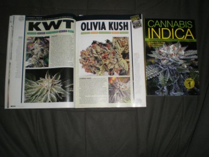 3525-OtherSide Farms featured in the new issue of SKUNK Magazine!