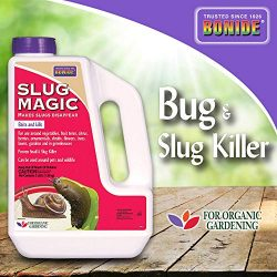 Bonide (BND905) – Slug Magic, Garden Snail and Slug Killer Granules for Organic Gardening, Slug and Snail Insecticide/Pesticide (3 lb.)