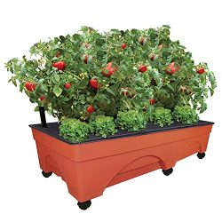 EMSCO Group Big City Picker Raised Bed Grow Box – Self Watering and Improved Aeration – Mobile Unit with Casters – Extra Large 48″ x 20″ Design