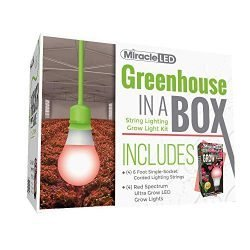 Miracle LED Greenhouse in a Box Ultra Grow Red Spectrum Fruiting & Flowering Single-Socket 6-Foot Corded LED Grow Light Bulb Kit (4-Pack)