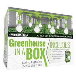 Miracle LED Greenhouse in a Box Grow Kit for Indoor Plants – Includes 4 Full Spectrum Daylight Ultra Grow 150W Grow Light Bulbs & One 4-Socket Corded Light Fixture (2-Pack – 2 Strings, 8 Bulbs)