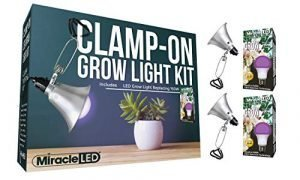 Miracle LED 602899 Ultra Red & Blue Spectrum High Yield Germination Replacing 150W Clamp & Grow Anywhere (2-Pack) Clamp-On LED Grow Light Kit