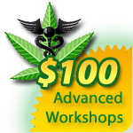 Advanced Workshops